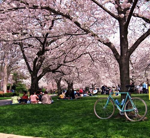 suburban Washington, DC (c2011 FK Benfield)