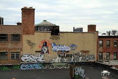 marcy (Luna Park) Tags: nyc ny newyork ski rooftop brooklyn graffiti goal williamsburg lunapark gen2 907 rth werds muk123
