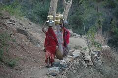 Water Bearers (becklectic) Tags: india rajasthan ranakpur 2011 morningwalk village woman women catchycolors load burden hindustan 20110317dsc0896 color catchycolor msh101211 msh1012 views100 worldtrekker