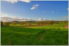 Primavera (miguelangelortega) Tags: campo hdr tarde cebada ltytrx5 ltytr2 ltytr1 ltytr3