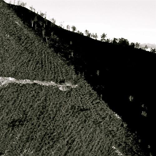 la tierra yerma by eMecHe