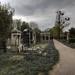 Zentralfriedhof 1978b