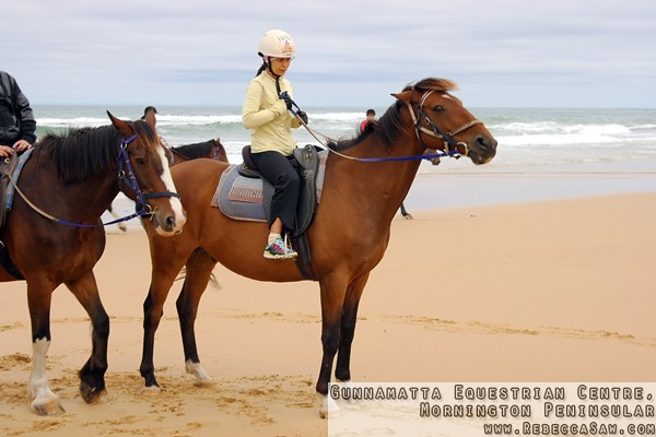 Gunnamatta Equestrian Centre, Mornington Peninsular-18