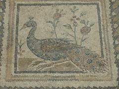 2011-01-tunesie-315-tunis-bardo musee