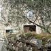 2011-04-14_village_soleil