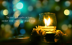 Romancing Flames (Juavenita ) Tags: light party flower dark candle bokeh lanka flame burn srilanka decor tabledecor