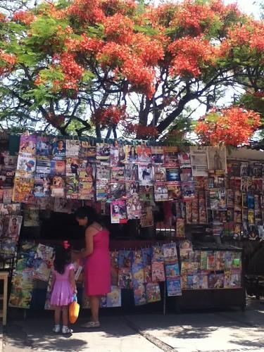 News Stand @ Oaxaca 04.2011