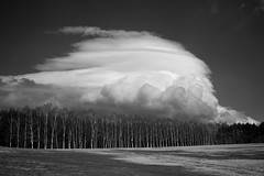 Lenticular Sunday in Iwate [Explored] (jasohill) Tags: bw cloud nature beauty japan clouds forest landscape iwate   lenticular   hachimantai 2011