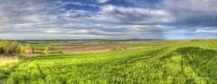 Uzundzhovo's Wheat Fields (Didenze) Tags: light sky panorama clouds rural landscape shadows village wheat bulgaria fields hdr goldenhour canon450d didenze uzundzhovo