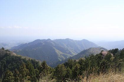 景信山からみた北高尾山稜の新緑