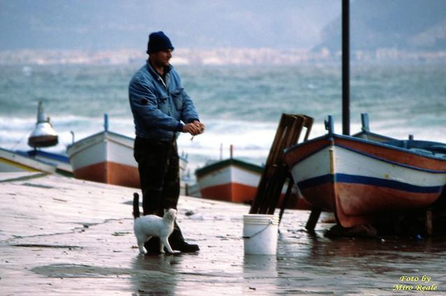il gatto ed il pescatore (aspra)