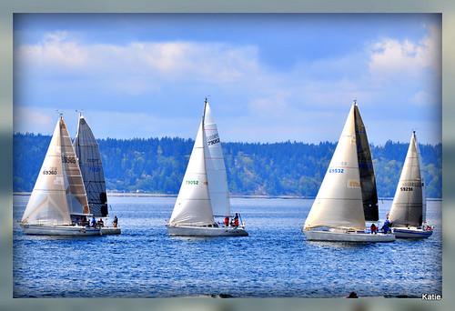 water sailboat boat wind pugetsound desmoinesmarinaapril2011