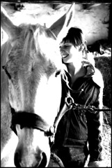 Julia und Greif (feldweg) Tags: horse caballo cheval julia cavallo pferd hest kon greif