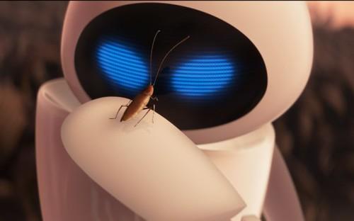 Eve + Hal