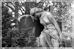 Grabfigur auf dem Friedhof Wuppertal Unterbarmen (13) (Georg Sander) Tags: pictures wallpaper sculpture friedhof cemeteries woman sexy girl loss cemetery grave graveyard photo pain nice foto shot photos sweet shots graveyards tomb picture skulptur graves fotos memory figure gravestone frau bild grab wuppertal grabstein sorrow dem auf sculptures gravestones mdchen bilder erinnerung grabsteine gedenken schmerz trauer grieve aufnahmen grber skulpturen friedhfe aufnahme hbsch unterbarmen verlust grabfigur grabfiguren grabskulptur grabskulpturen trauert