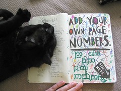 WTJ - It's a little know fact that cats love numbers