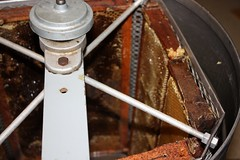 inside the centrifuge