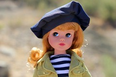 Robert Tonner Sindy (dambuster01) Tags: sindy roberttonner 50thbirthday vinyl doll perfectday