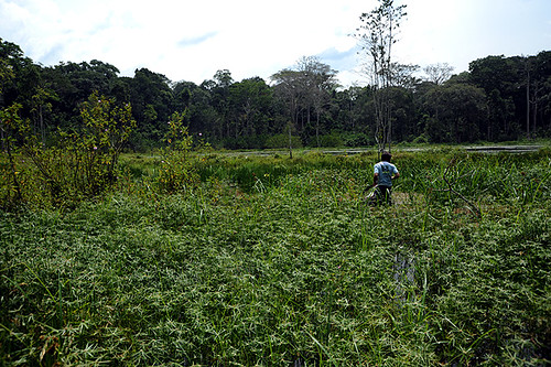 Expédition Sangha 2010 : prospection dans un des lacs
