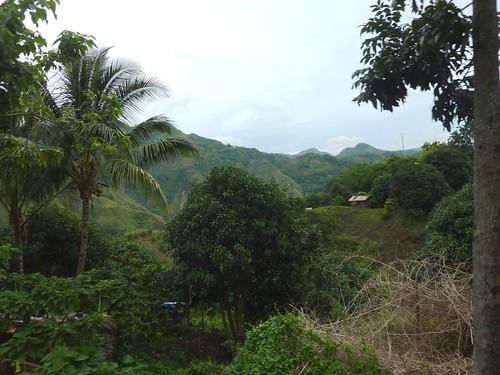 Negros-San Carlos-Bacolod (15)