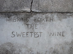 bring forth the sweetest wine by throgers, on Flickr