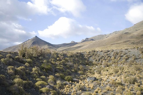 Near Nahuel Pan La trochita