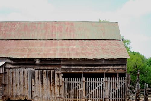 100 year old barn.