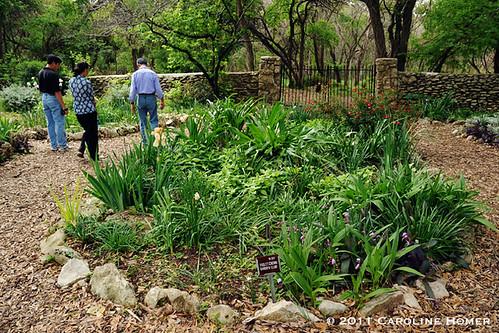 Garden plot tended by volunteers