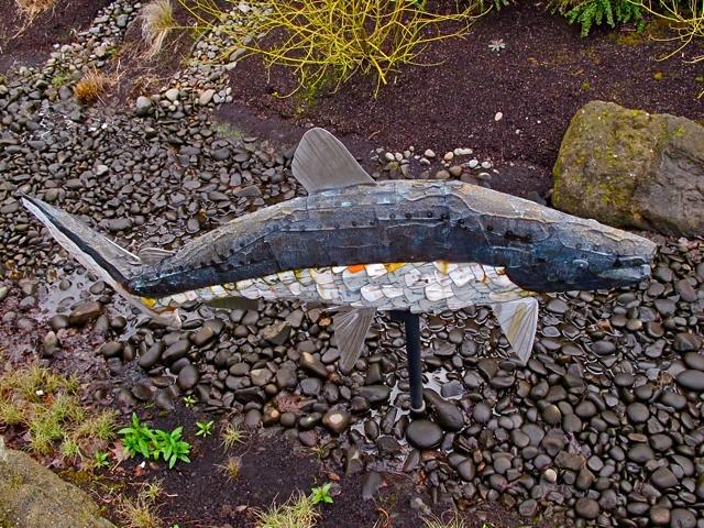 native fish society 3