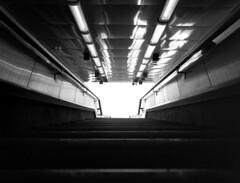 645 métro marseille 017 (effixe) Tags: blackandwhite bw rollei underground marseille 645 noiretblanc métro rodinal 45mm 1100 mamyia645 standdev