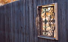 Wrought Window (jaxxon) Tags: blur macro window composition fence lens prime nikon focus dof bokeh wroughtiron perspective pad depthoffield micro fancy fixed 365 mm nikkor ff vr afs hff 2011 d90 nikor project365 f28g gvr jaxxon jackcarson multifarious apicaday ayearinpictures nikond90 hpad nikkor105mmf28gvrmicro 365098 098365 desklickr project365098 jacksoncarson jacksondcarson ayearinphotographs hpadw fencefriday fencefridays project3652011 2011yip 3652011 yip2011 2011ayearinpictures 2011365098 project365982011