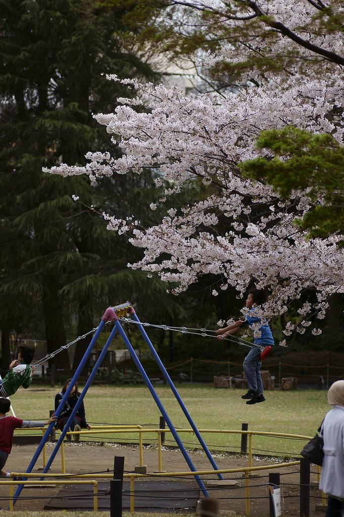 菅刈公園 2