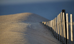 Beach Fence and Ripples (Babylon and Beyond Photography) Tags: ocean beach fauna sunrise fence bay sand dunes south great longisland babylon fireisland robertmoses