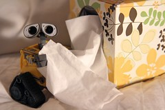Tissue (twmjedi) Tags: canon toy rebel tissue disney pixar 365 efs xsi 1755 walle 1755mm project365 efs1755 canonefs1755mmf28isusm 450d canonefs1755mmf28 oneobject365daysproject 365toyproject walle365