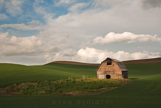 Between the Shadows, In the Light. Palouse Barn