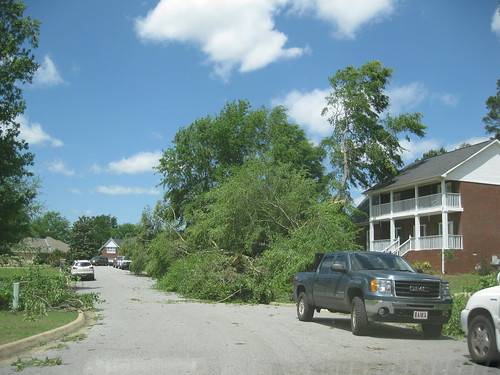 tuscaloosa tornado pictures. Tuscaloosa Tornado Damage