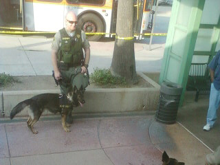 "Sheriff K-9 unit. Burbank station - uploaded with <a href=""http://twitpickr.com"" rel=""nofollow"">twitpickr.com</a>. (v2)"