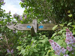 inbetween (Malcolm Anderson) Tags: countryside signpost nationaltrust lewesdon