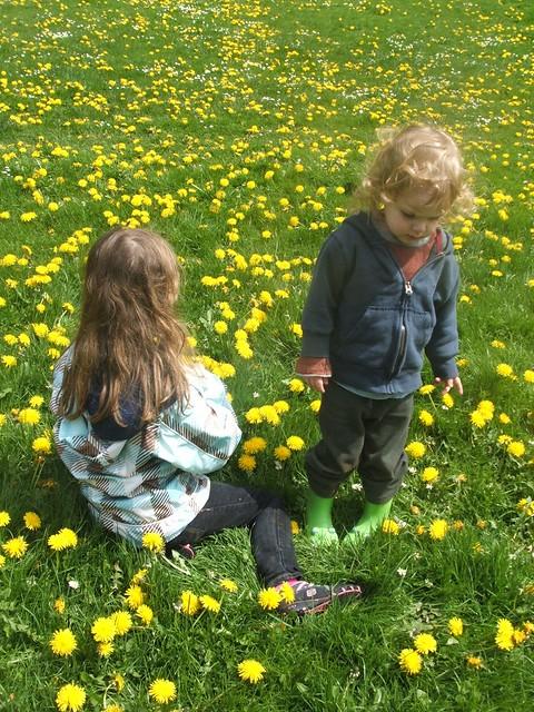 spring2011 225