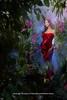 Elissa's New Lazurde Pics 2011 (Elissa Official Page) Tags: new pics elissa 2012 صور جديد 2011 elissas فلكر روتانا كليب فيديو البوم حصريا الفنانه بوك اليسا اغنيه فيس حصري lazurde يوتيوب تويتر اللبنانيه سنجل