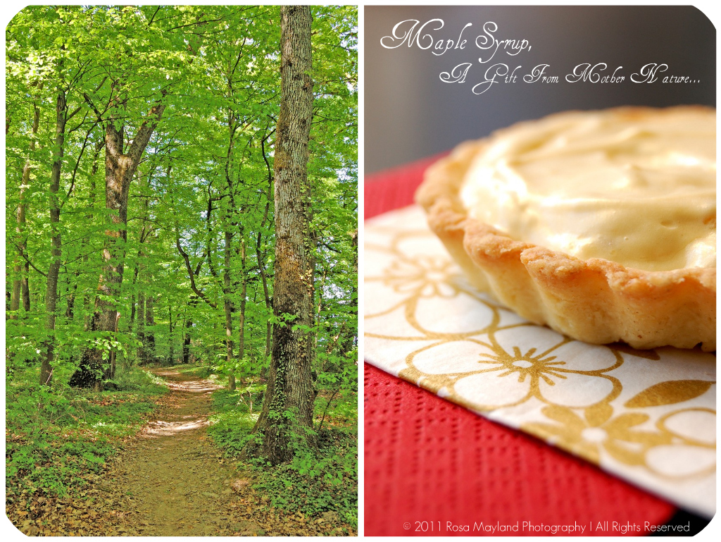 Maple Tartlets Picnik collage 3 bis