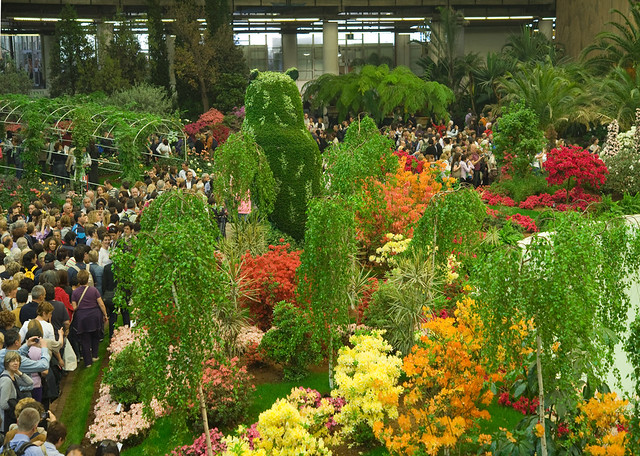 Цветочная выставка в Генуе 10