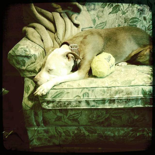 Sleeping Mina