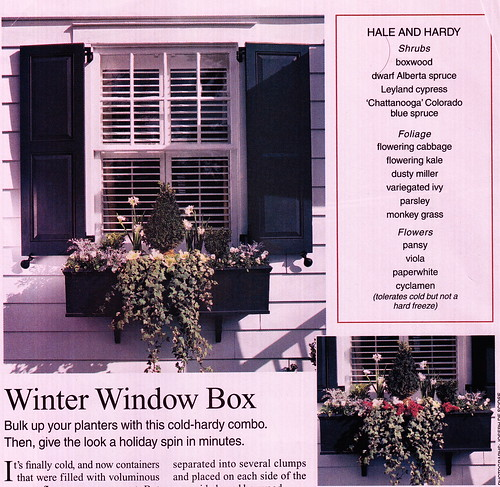 WindowBoxes_0002