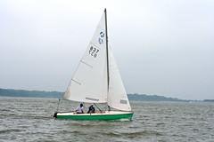 dallas sailing whiterocklake