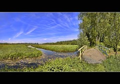 a very nice walk (Wim Koopman) Tags: bridge trees sky holland green netherlands dutch grass walking photography foot photo hiking path walk stock nederland meadow blues hike polder footpath stockphoto stockphotography zouweboezem wpk