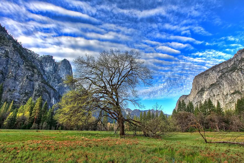 IMAGE: http://farm6.static.flickr.com/5190/5752933542_8c58a4111e_b.jpg