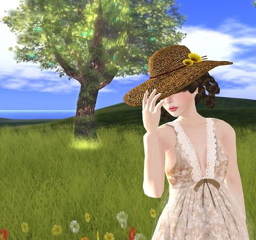 Sunny Days IV