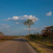 Roads of the Yucatan