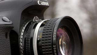 Nikkor 20mm on Canon Rebel T3i